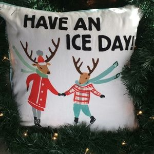 """New Indigo """"Have an ice day"""" pillow cover"""